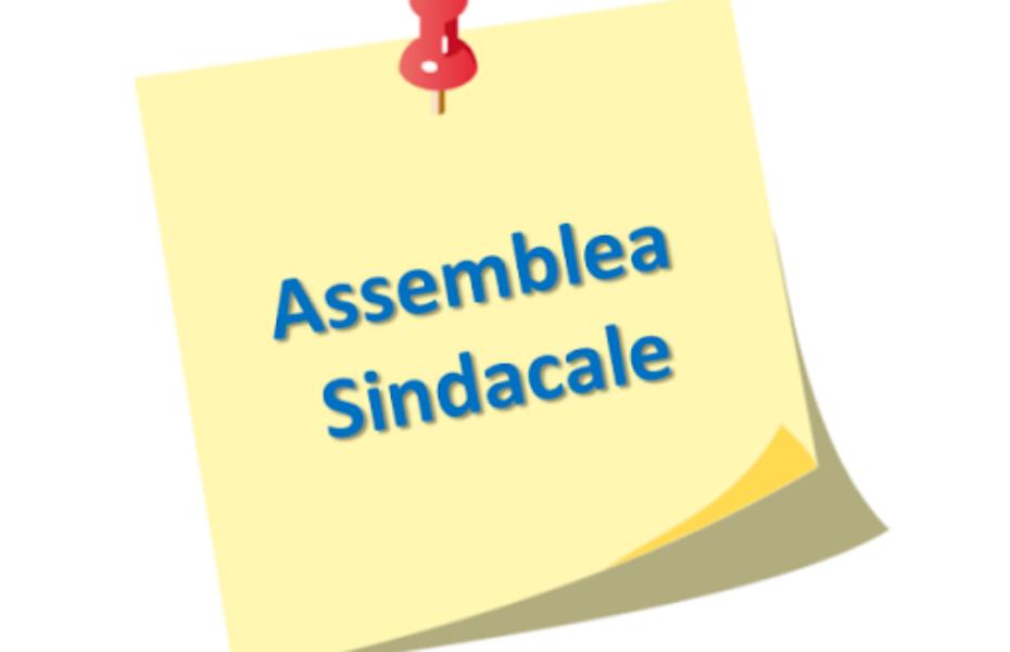ASSEMBLEA SINDACALE PERSONALE ATA  DEL  13.05.2021